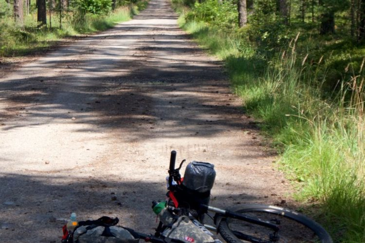 bikepacking rowerem w środku lasu